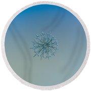 Snowflake Photo - Twelve Months Round Beach Towel