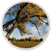 Round Beach Towel featuring the photograph Soccer Tree by Bill Kesler
