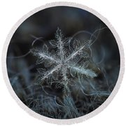 Leaves Of Ice Round Beach Towel