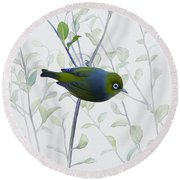 Round Beach Towel featuring the painting Silvereye by Ivana Westin