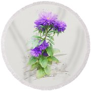 Round Beach Towel featuring the painting Purple Aster by Ivana