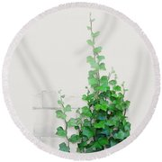 Round Beach Towel featuring the painting Vines By The Wall by Ivana