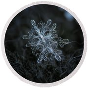 Round Beach Towel featuring the photograph Snowflake Of January 18 2013 by Alexey Kljatov