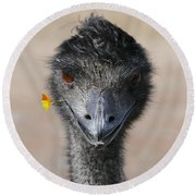 Round Beach Towel featuring the photograph Happy Emu by Ivana Westin