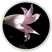 Round Beach Towel featuring the photograph Lovely Lilies Bird In Flight by Felipe Adan Lerma