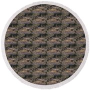 Resting Coyote Round Beach Towel