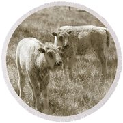 Round Beach Towel featuring the photograph Pair Of Baby Buffalos by Rebecca Margraf