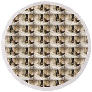 Mountain Lion - Light Round Beach Towel