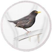 Ms. Blackbird Is Brown Round Beach Towel