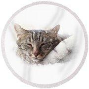 Cat And Snow Round Beach Towel