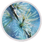 Blue Atlas Cedar Winter Holiday Card Round Beach Towel
