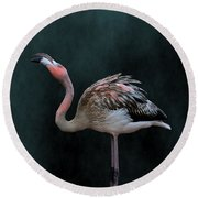 Song Of The Flamingo Round Beach Towel