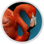 Profile Of An American Flamingo Round Beach Towel