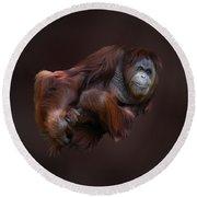 Folded Orangutan Round Beach Towel