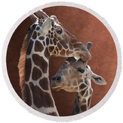 Endearing Giraffes Round Beach Towel