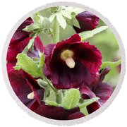 Red Hollyhock Flowers Round Beach Towel