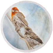 House Finch Couple Round Beach Towel