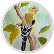 Pretty American Goldfinch Round Beach Towel