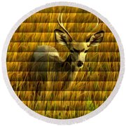 The Buck Poses Here Round Beach Towel by Bill Kesler