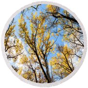 Round Beach Towel featuring the photograph Looking Up by Bill Kesler