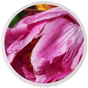 Pink Delight Round Beach Towel by Bill Kesler
