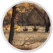 Round Beach Towel featuring the photograph Shades Of Autumn by Bill Kesler