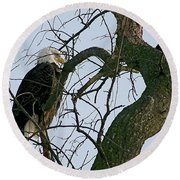 As The Eagle Looks On Round Beach Towel by Sue Stefanowicz