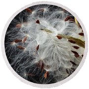Round Beach Towel featuring the photograph Asclepias Seed Pod by Ann Jacobson