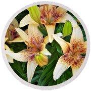 Asiatic Lilies Round Beach Towel