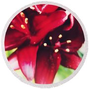 Asiatic Lilies Round Beach Towel