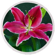 Round Beach Towel featuring the photograph Oriental  Lily Aka Stargazer by Larry Nieland