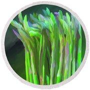 Asparagus Study 01 Round Beach Towel by Wally Hampton