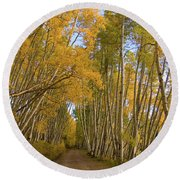 Round Beach Towel featuring the photograph Aspen Alley by Steve Stuller