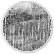 Round Beach Towel featuring the photograph Aspen Ambience Monochrome by Eric Glaser