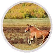 Aspen And Horsepower Round Beach Towel