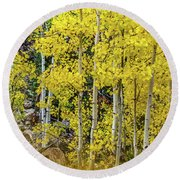 Round Beach Towel featuring the photograph Aspen Autumn Burst by Bill Gallagher