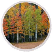 Aspen Color Round Beach Towel