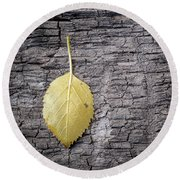 Aspen Leaf On Bark Round Beach Towel