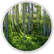 Aspen Morning 1 Round Beach Towel