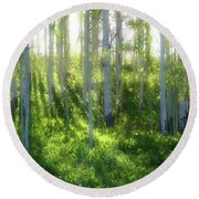 Aspen Morning 3 Round Beach Towel