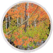 Aspen Stoplight Round Beach Towel