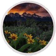 Aspen Sunflower Sunset In The Tetons Round Beach Towel