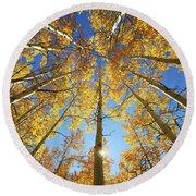 Aspen Tree Canopy 2 Round Beach Towel