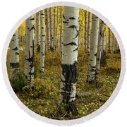 Aspens - 0245 Round Beach Towel