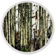 Aspens 1 Round Beach Towel