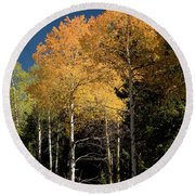 Round Beach Towel featuring the photograph Aspens And Sky by Steve Stuller