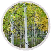 Aspens In Autumn 6 - Santa Fe National Forest New Mexico Round Beach Towel