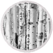 Round Beach Towel featuring the photograph Aspens In Black And White  by Saija Lehtonen