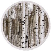 Aspens In Winter Panorama - Colorado Round Beach Towel