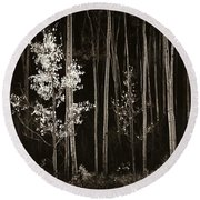 Aspens Northern New Mexico Round Beach Towel
